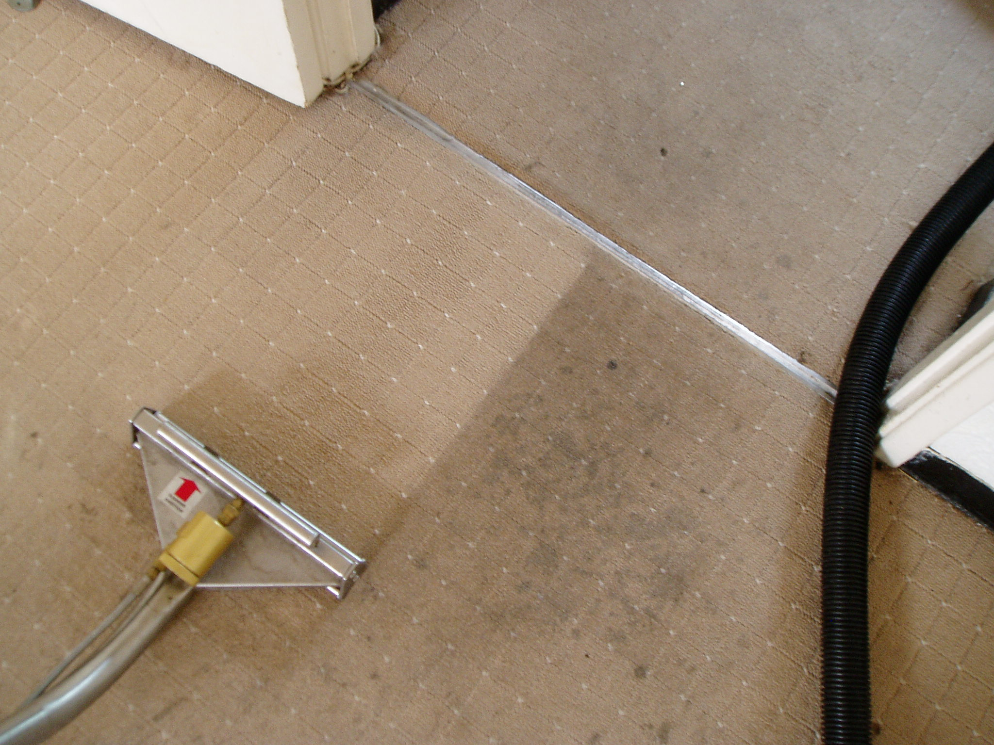 The Best Ways To Clean Your Carpets Thrash Lab